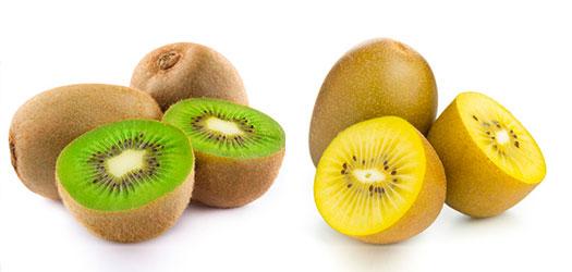 Il kiwi verde o giallo dalle tante virt salutari for Kiwi giallo piante acquisto
