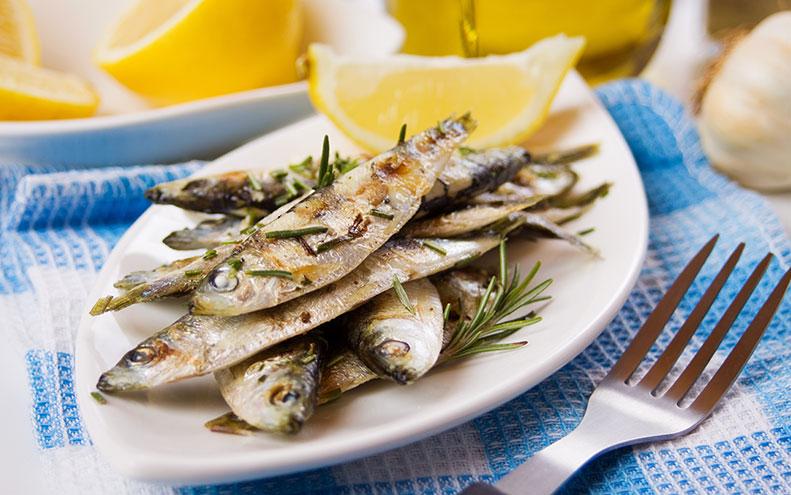 Sardine Un Super Alimento Buono Ed Economico