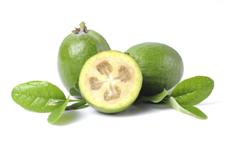 Feijoa il frutto che viene dal brasile for Pianta feijoa